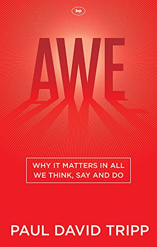 Awe:  Why it Matters in All We Think, Say and Do