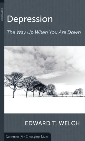 Depression the Way up the Way down: The Way Up When You Are Down PB