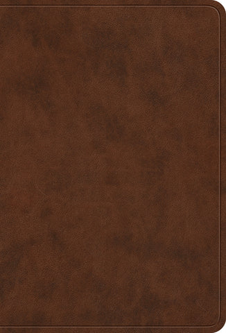 Value Large Print Compact Bible: Trutone, Brown