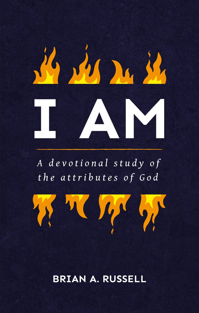 I AM:  A Biblical and Devotional Study of the Attributes of God PB