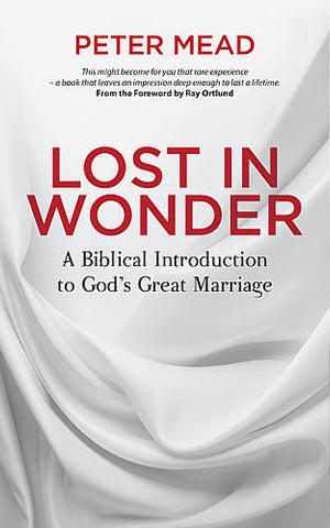 Lost in Wonder:  A Biblical Introduction to God's Great Marriage