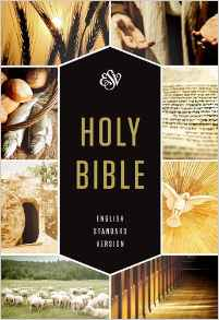 ESV Holy Bible, Textbook Edition: English Standard Version, Textbook Edition HB