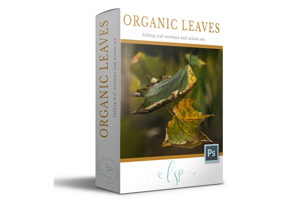 Organic Leaf Overlays & Mini Action set