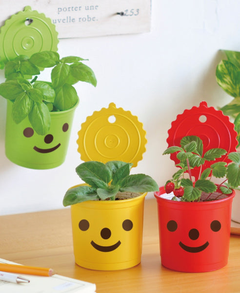 Smile & Smile happy face grow pot craft kits