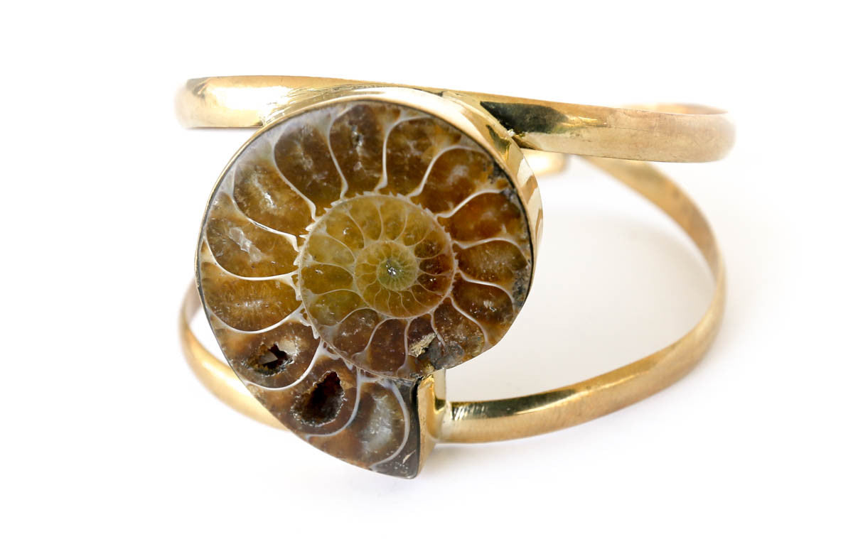 Fossilized shell brass bracelet