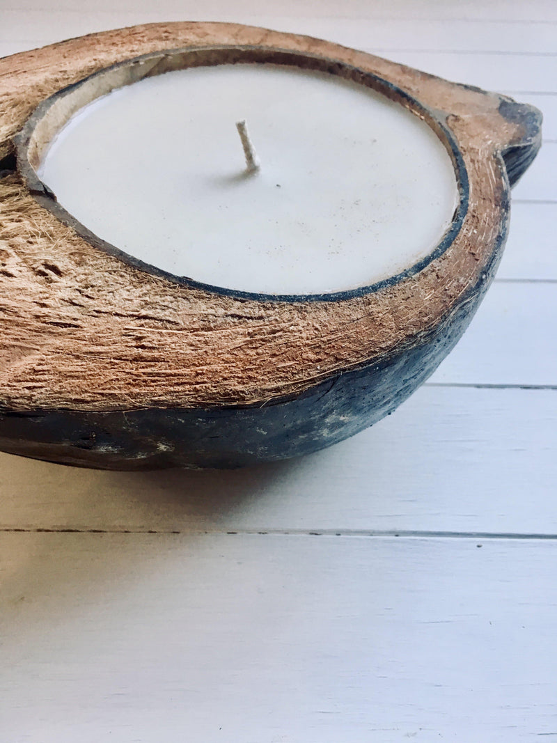 THE COCONUT CANDLE - Black Salt Co Coastal Luxe Homewares and Decor