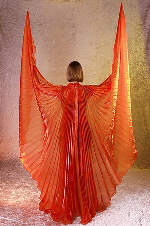 Bright Orange Isis Wings