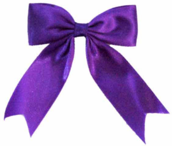 Purple Bow