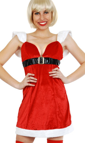 Mrs Claus Christmas Dress