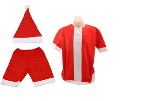 Santa Mens Beach Costume