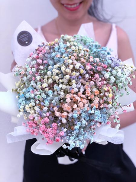 Rainbow Baby's Breath