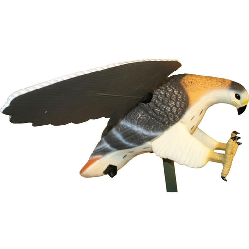 Mojo Hawk Decoy