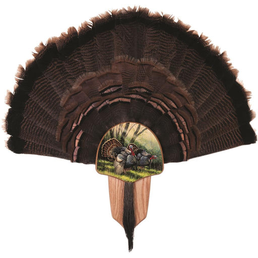 Walnut Hollow Turkey Display Kit Spring Strut