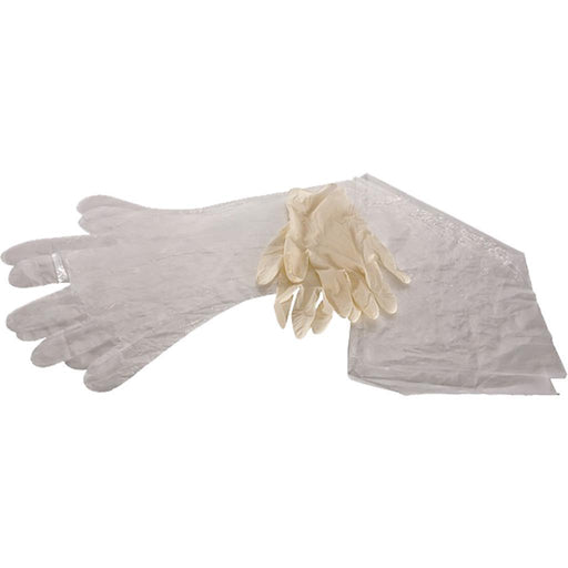 Allen Field Dressing Gloves 12 pk.