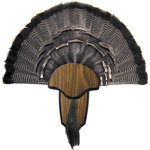 Hunters Specialties Turkey Mount Kit Tail & Beard