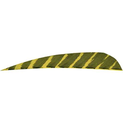Gateway Barred Feathers Yellow 4 in. RW 50 pk.