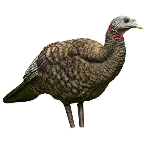 Avian X Turkey Decoy - Breeder