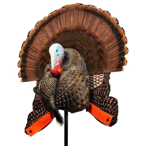 Best Turkey Decoys For The Money - Mojo scoot n shoot decoy