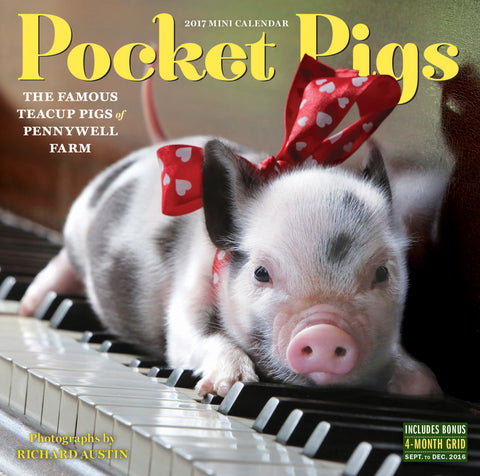 Pocket Pigs Mini Wall Calendar 2017