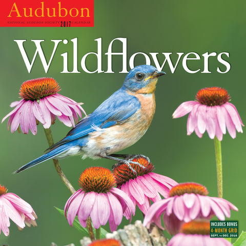 Audubon Wildflowers Wall Calendar 2017