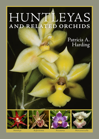 Huntleyas and Related Orchids