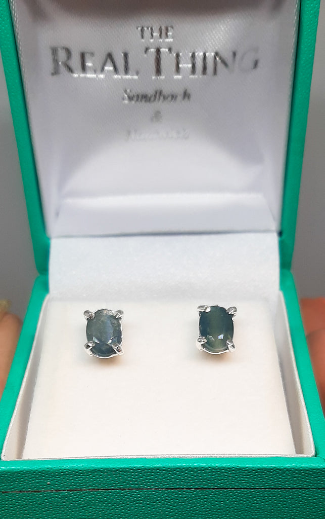 Oval Sapphire Claw Set Stud Earrings