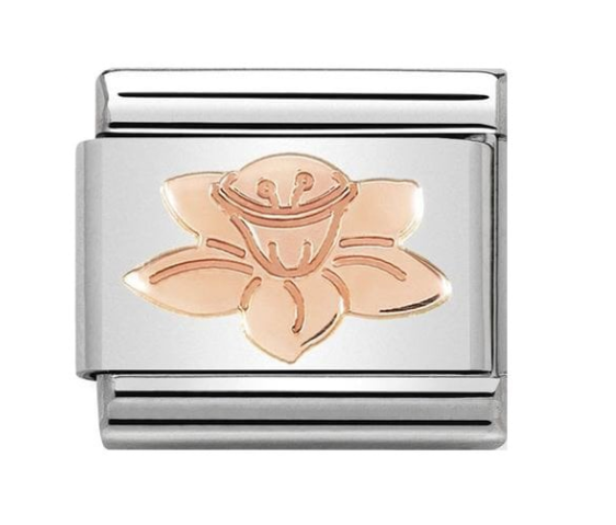 nomination rose gold daffodil welsh flower charm 430104/23