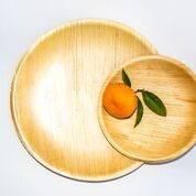 Compostable Plate made from Leaves is a good alternate to single use plastic disposable plates