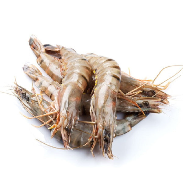 Frozen Black Tiger Prawn 31/40 - 1kg - LimSiangHuat