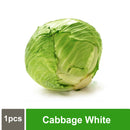 Cabbage White 1pcs