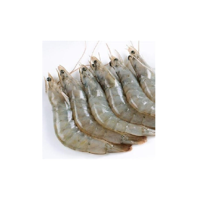 Frozen Prawn Raw Vannamei 41-50 2kg/box