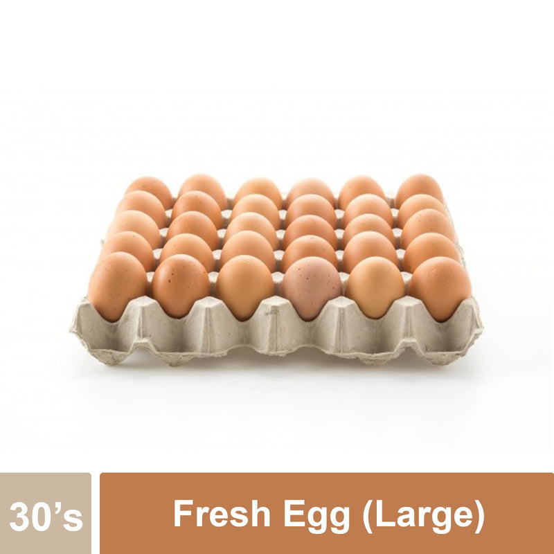 Fresh Egg (Large - 61-64g) 30's/Tray