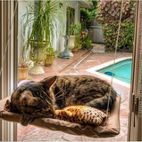 Cat Basking Window Hammock  FREE SHIPPING - 247onlinemall