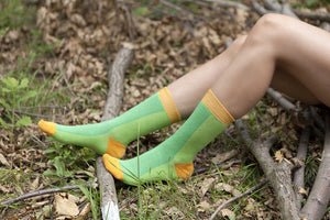 Grab These Bestselling Women's Colorful Crew Socks Now!