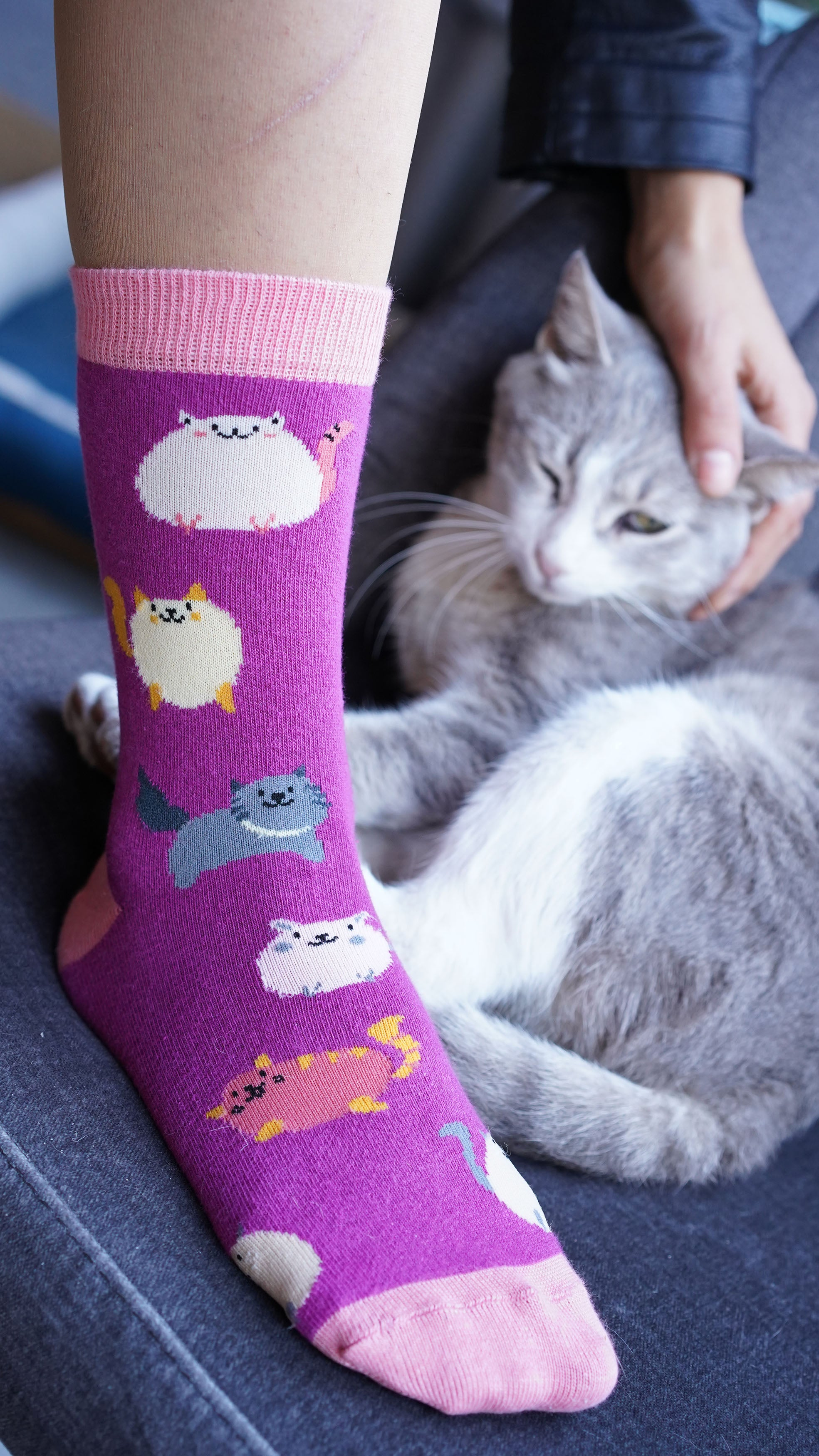 Women's Fatty Cats Socks