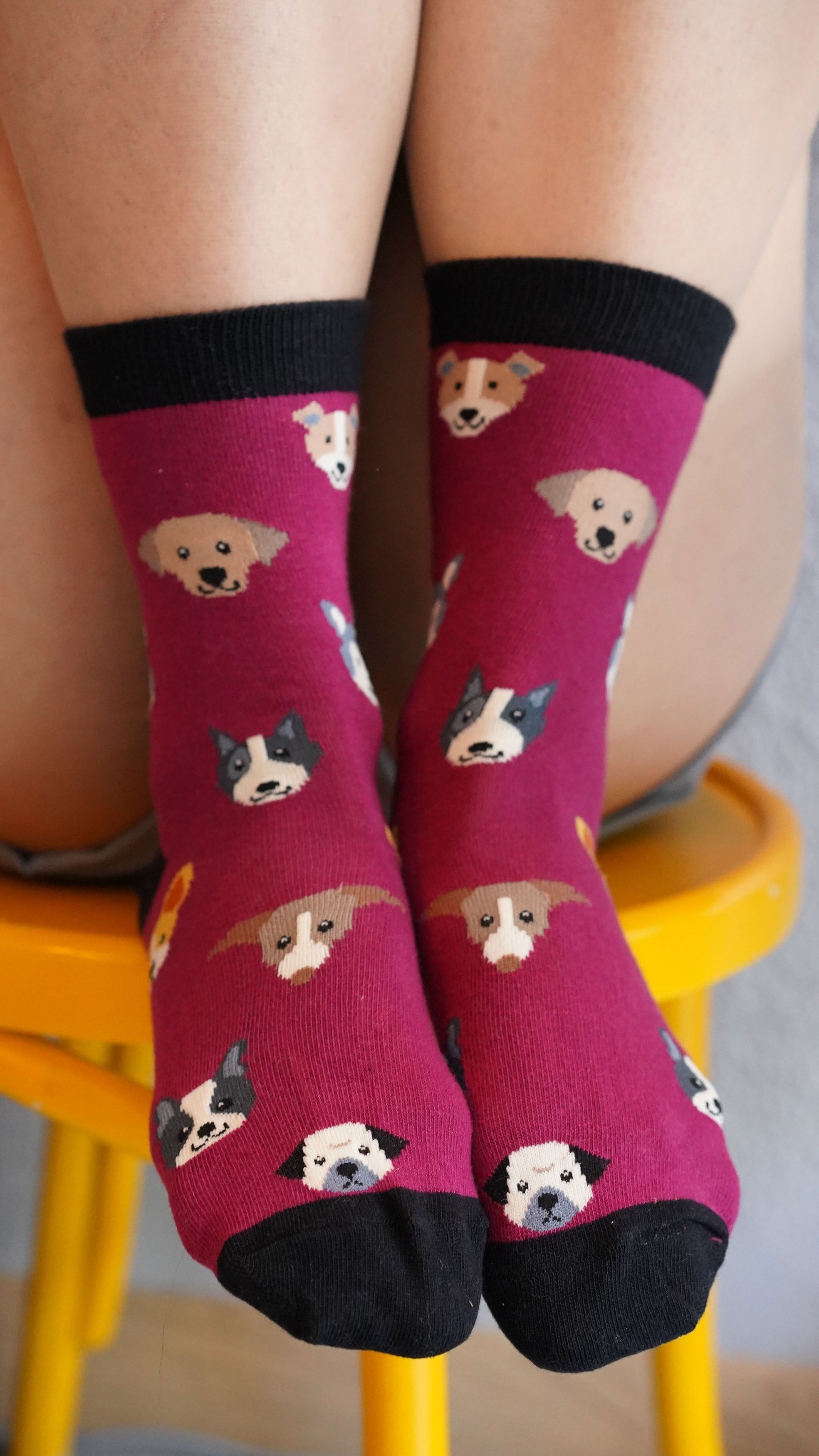 Women's Cute Dogs Socks Set