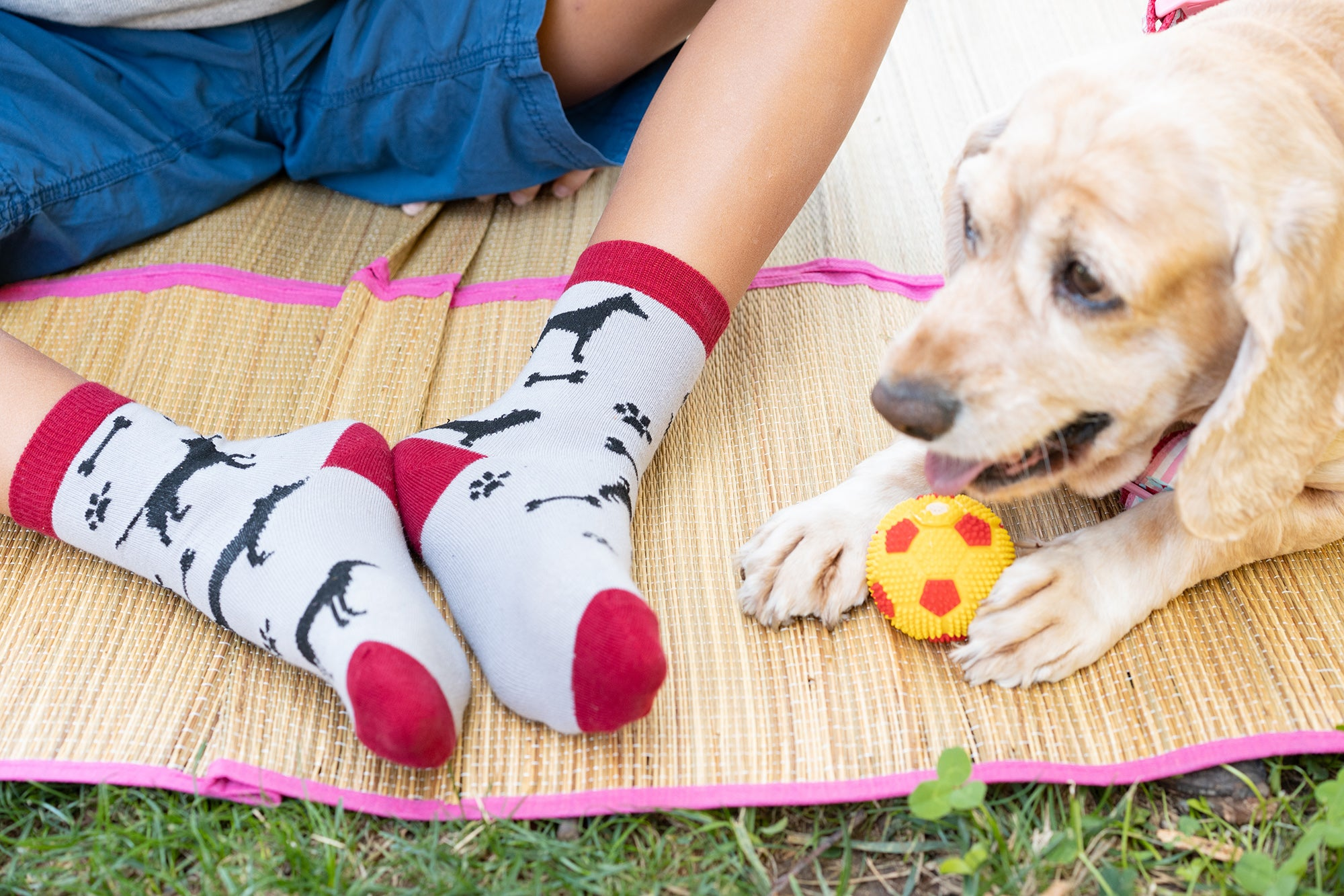 Kids Cute Dogs Socks 5-Pack