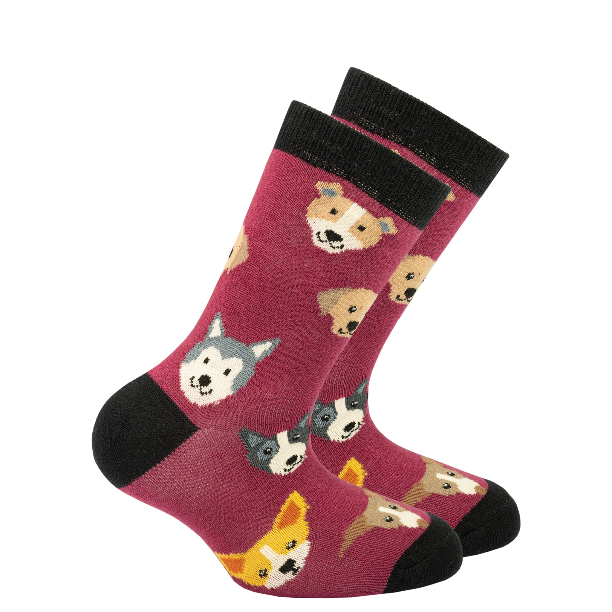 Kids Cute Dogs Socks red