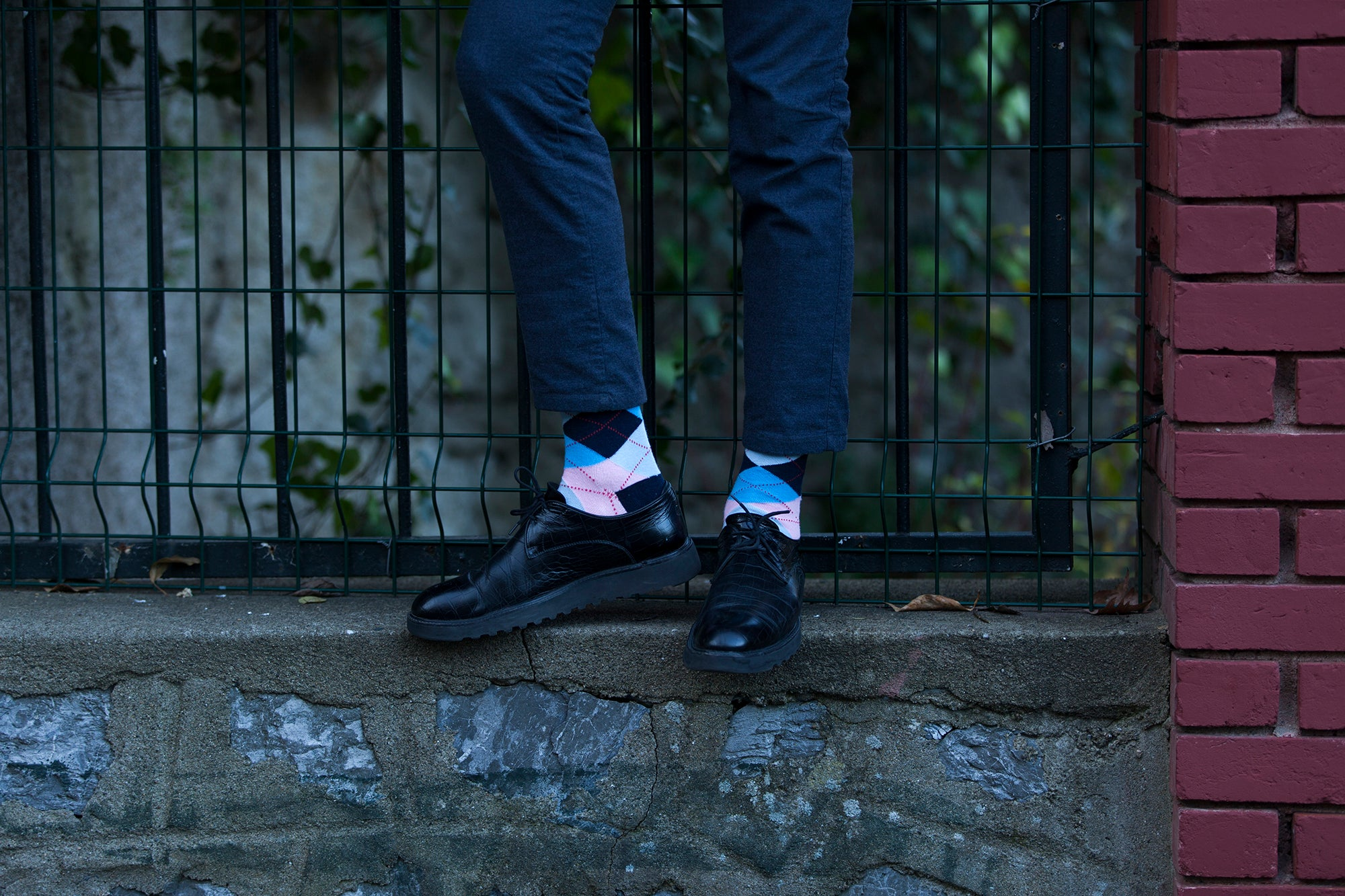 Men's Blush Argyle Socks