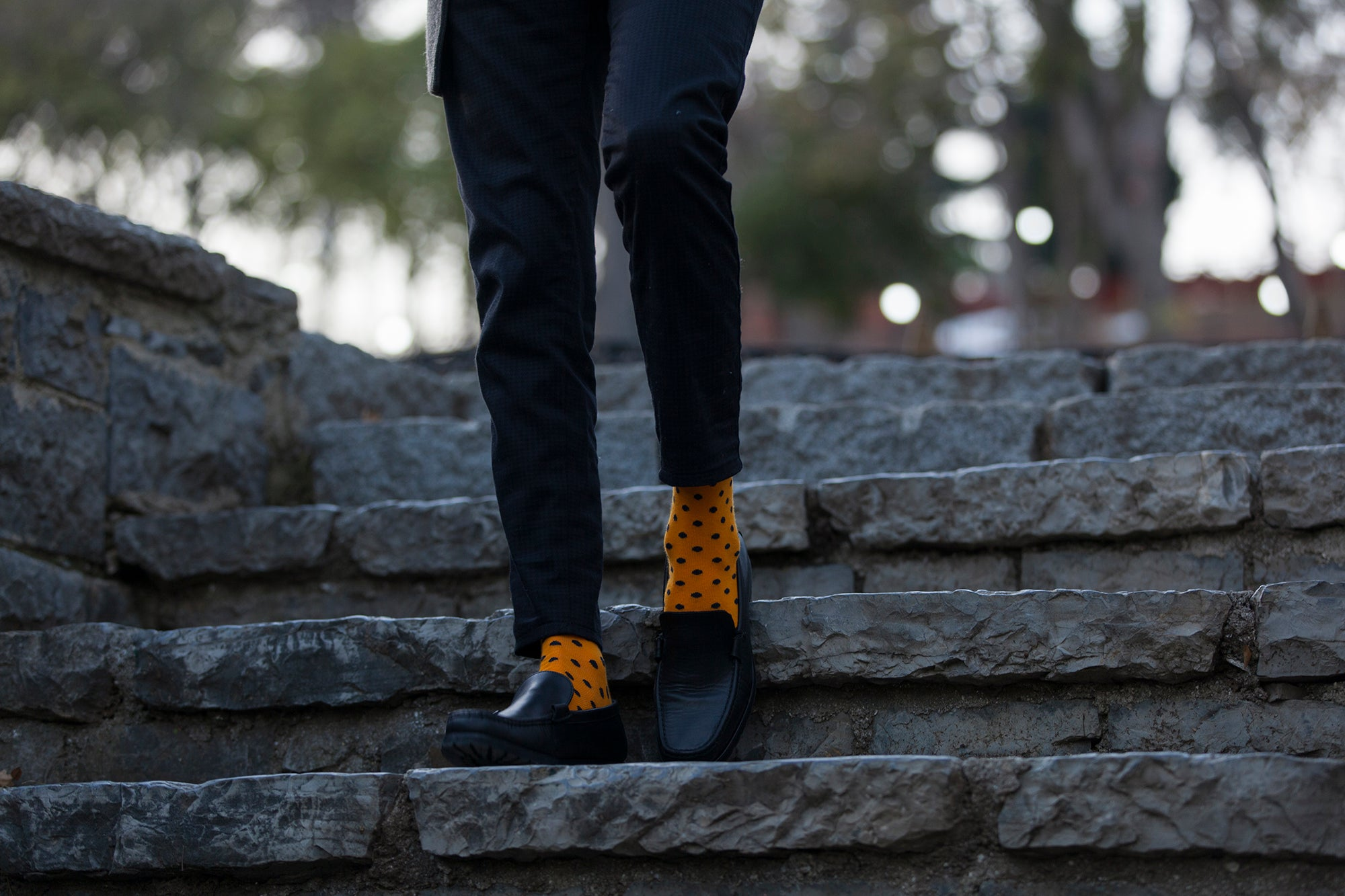 Men's Apricot Dot Socks