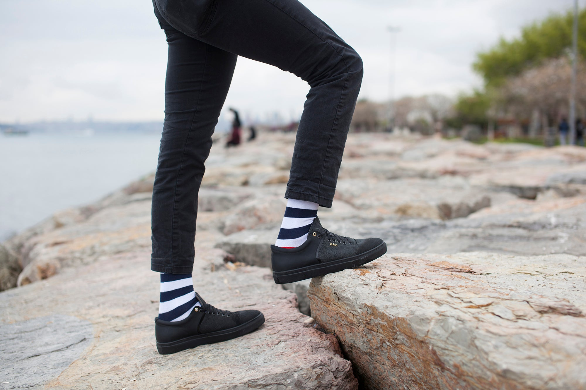 Men's Navy-White Stripes Socks