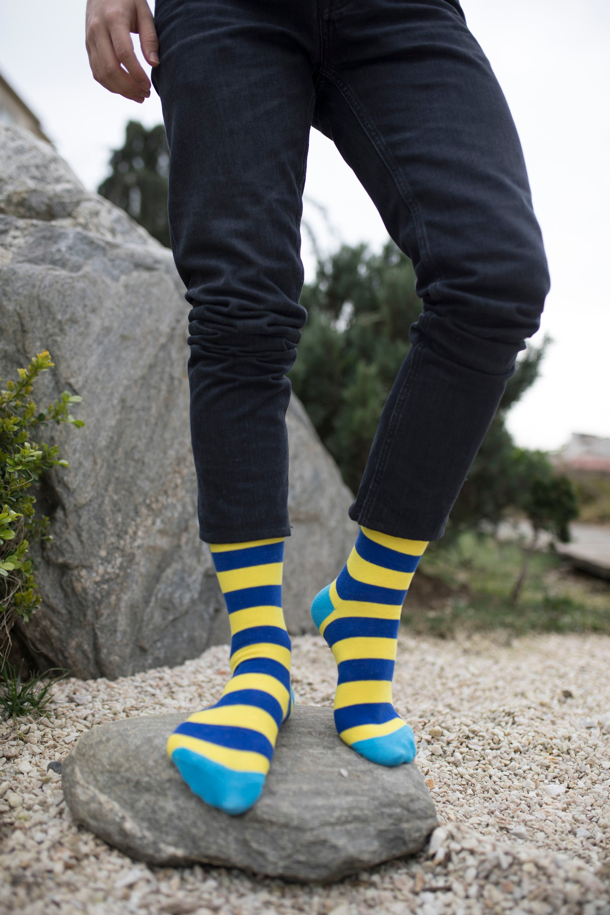 Men's Lemon Sky Stripe Socks