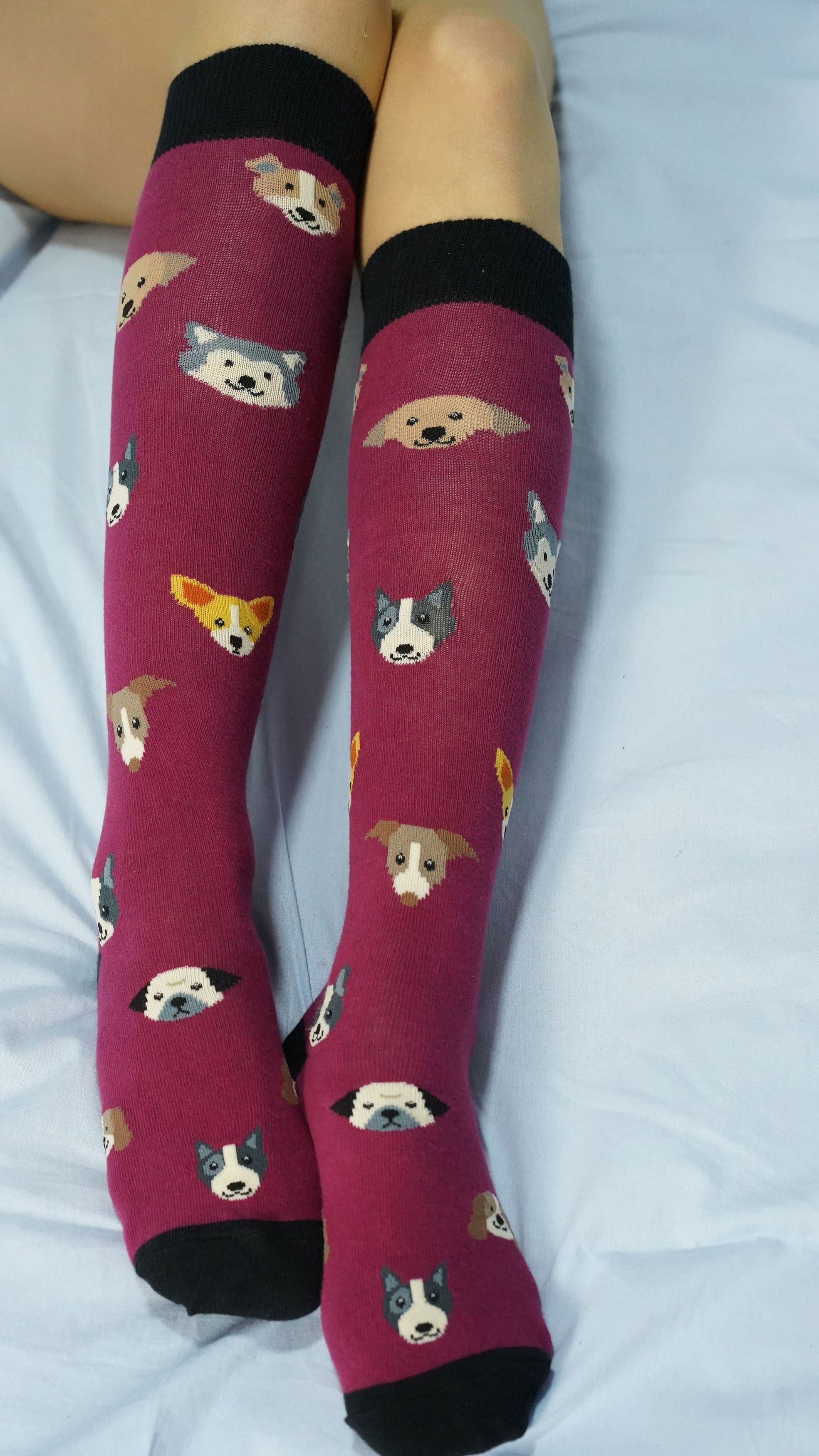 Women's Cute Dogs Knee High Socks Set