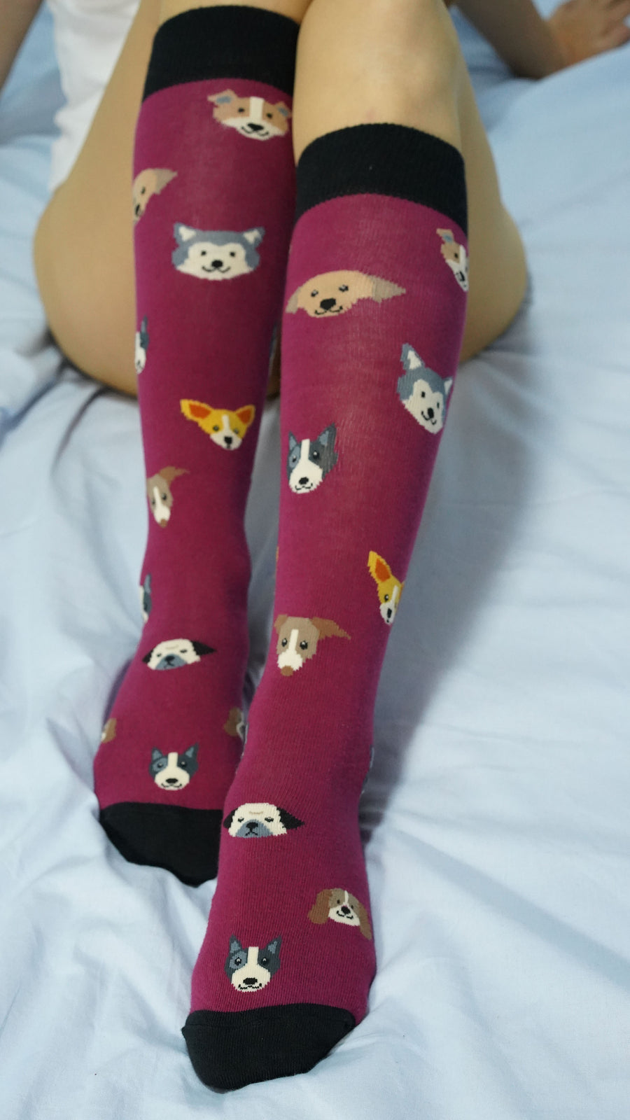 Women's Cute Dogs Knee High Socks