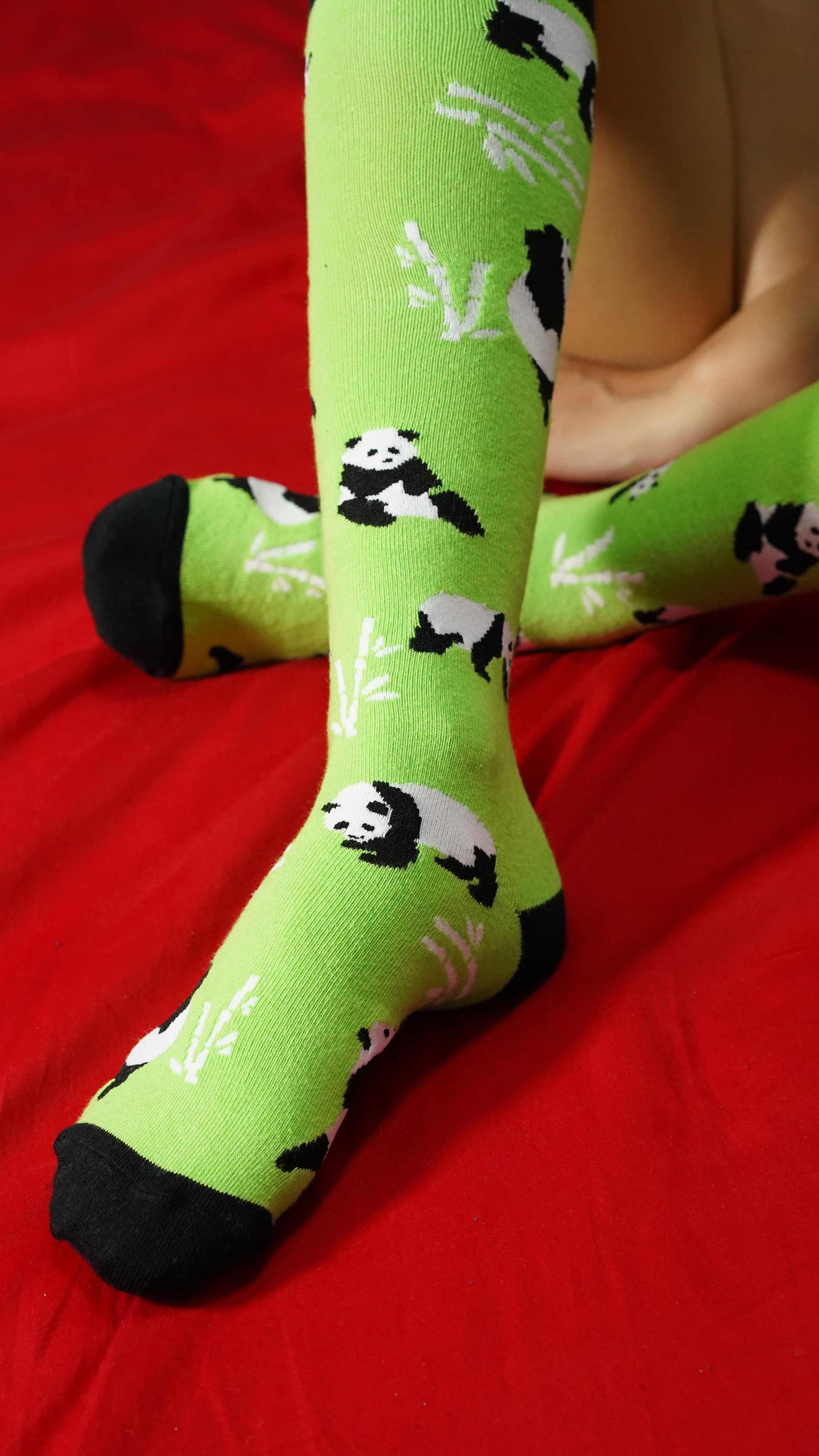 Women's Silly Panda Knee High Socks