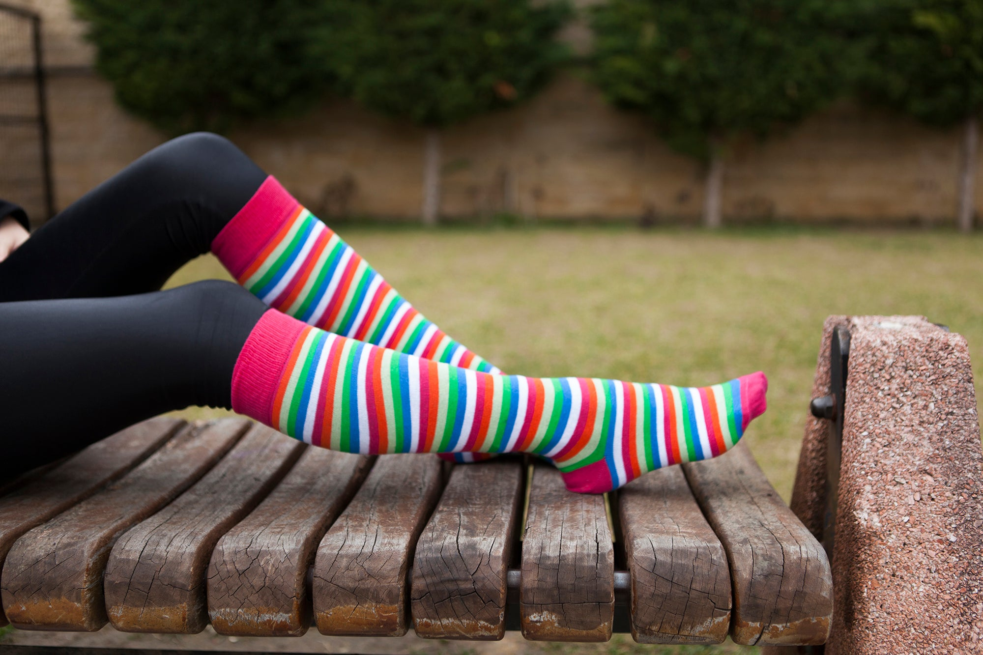 Women's Pink Blush Stripe Knee High Socks