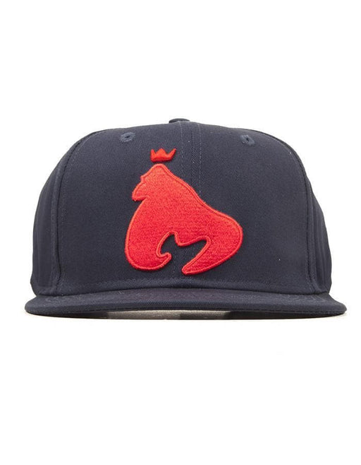 Money Clothing - King Ape Snapback