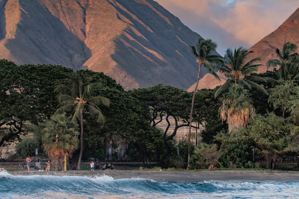 <b>Excellent Adventures: Hawaii with Stephen Lloyd</b>