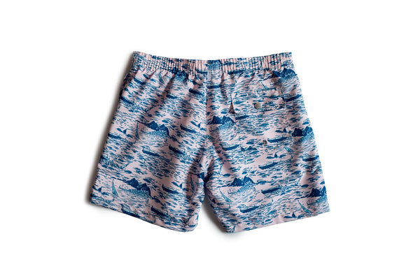 Men's swim trunks with motorboat pattern