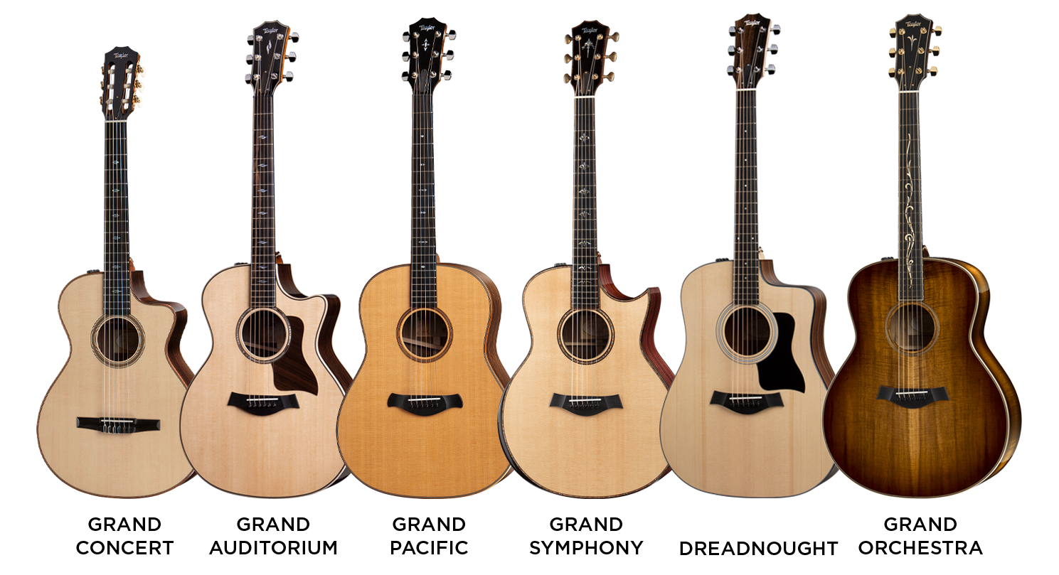 Taylor Guitar Body Shapes